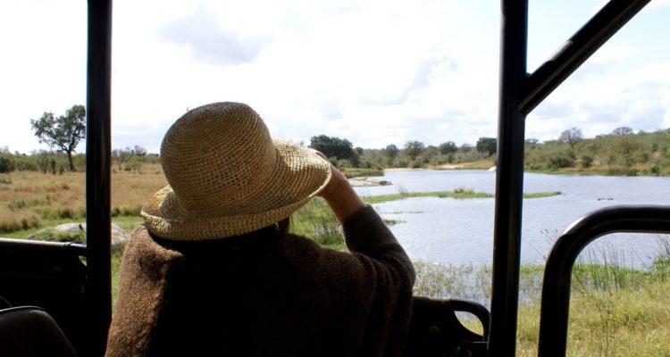 Big 5 Safaris in Kruger National Park, Umsisi House, Big 5 Safari